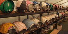 Annual Beer Festival